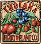 Indiana Berry Coupons & Offers